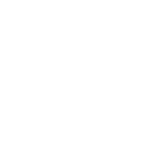Icon Sprühflasche